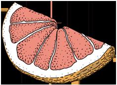 ThreeCents_grapefruit_3