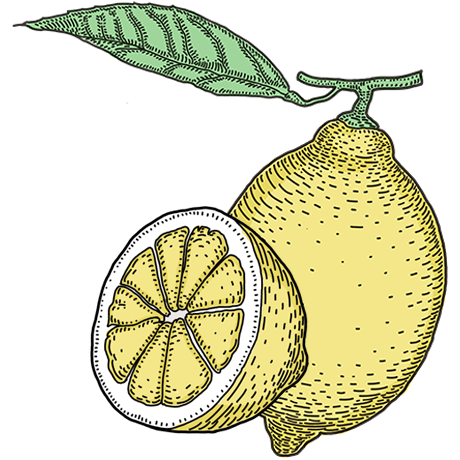 ThreeCents_lemon_1