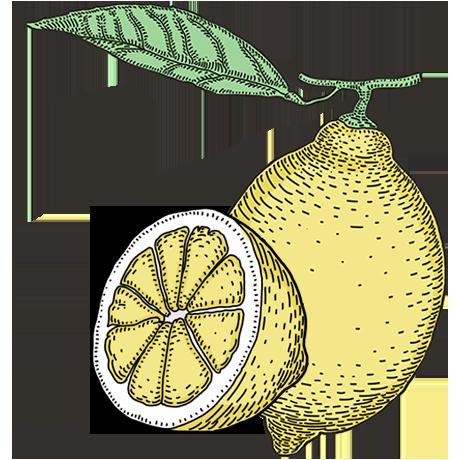 ThreeCents_lemon_1