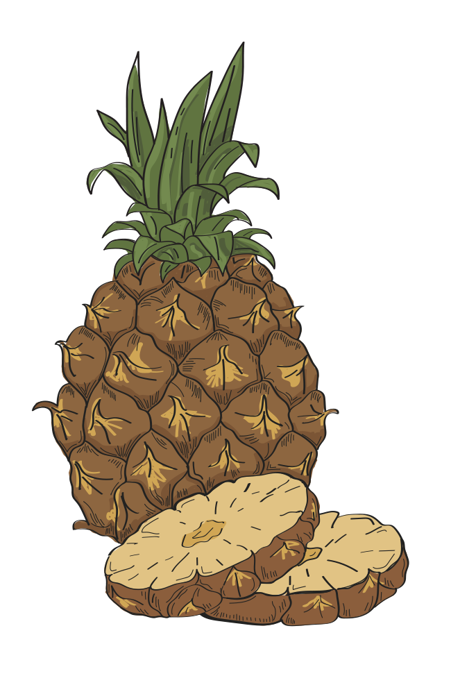 Pineapple [Converted]